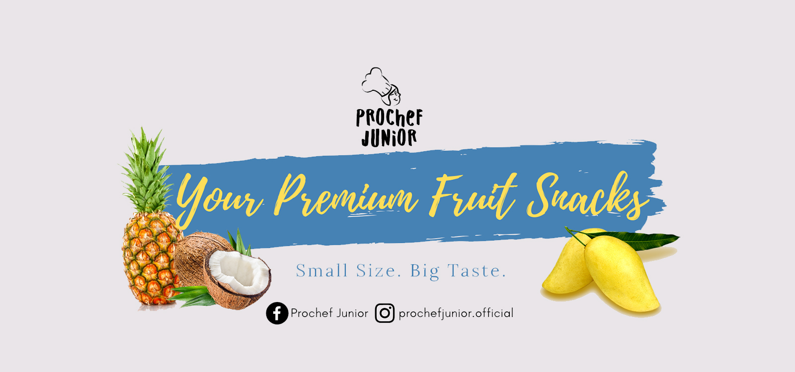 Prochef Junior Your Premium Fruit Snacks